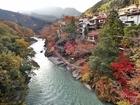 御嶽大橋より上流を望むPB131002.JPG